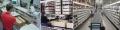 Hệ thống quản lý kho chứa (WMS)